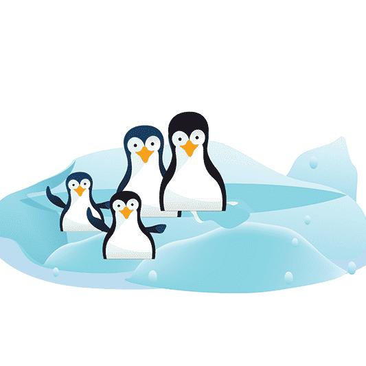 algorithme-google-pingouin2